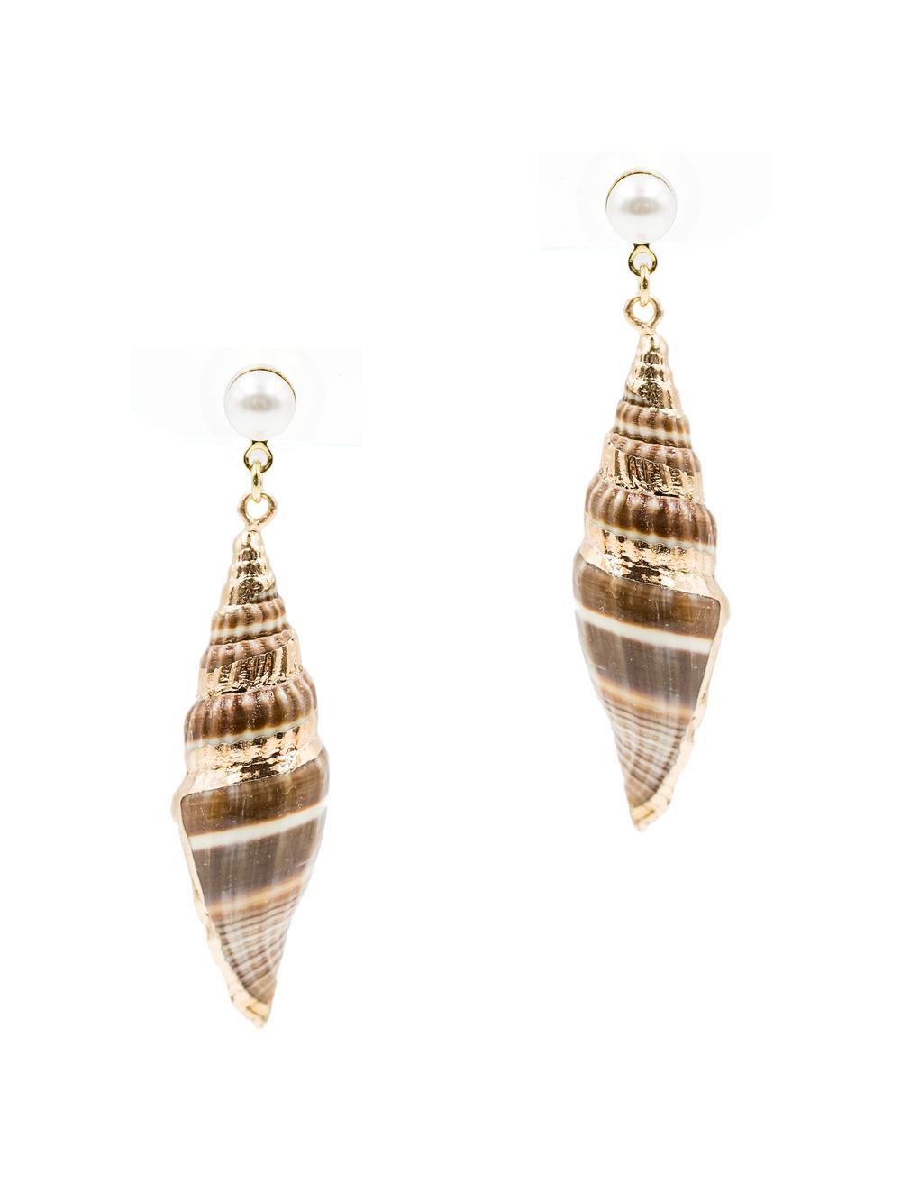 Sea Shell Earrings Item # E-SEA8
