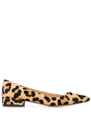 Leopard Pony Pointed Toe 20mm Flat