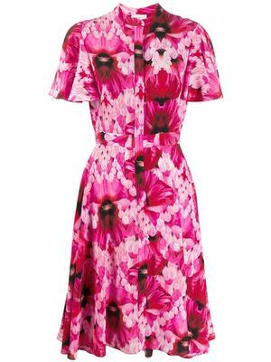 Flutter Sleeve Dress With Full Skirt