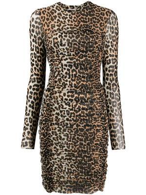 Leopard Print Mesh Ruched Short Dress