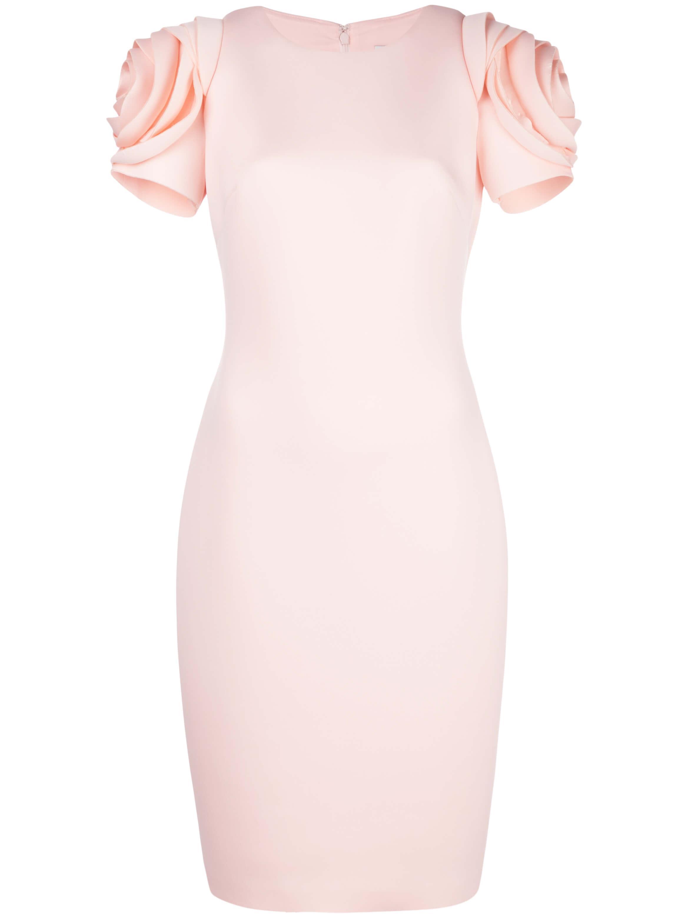 Rose Sleeve Dress