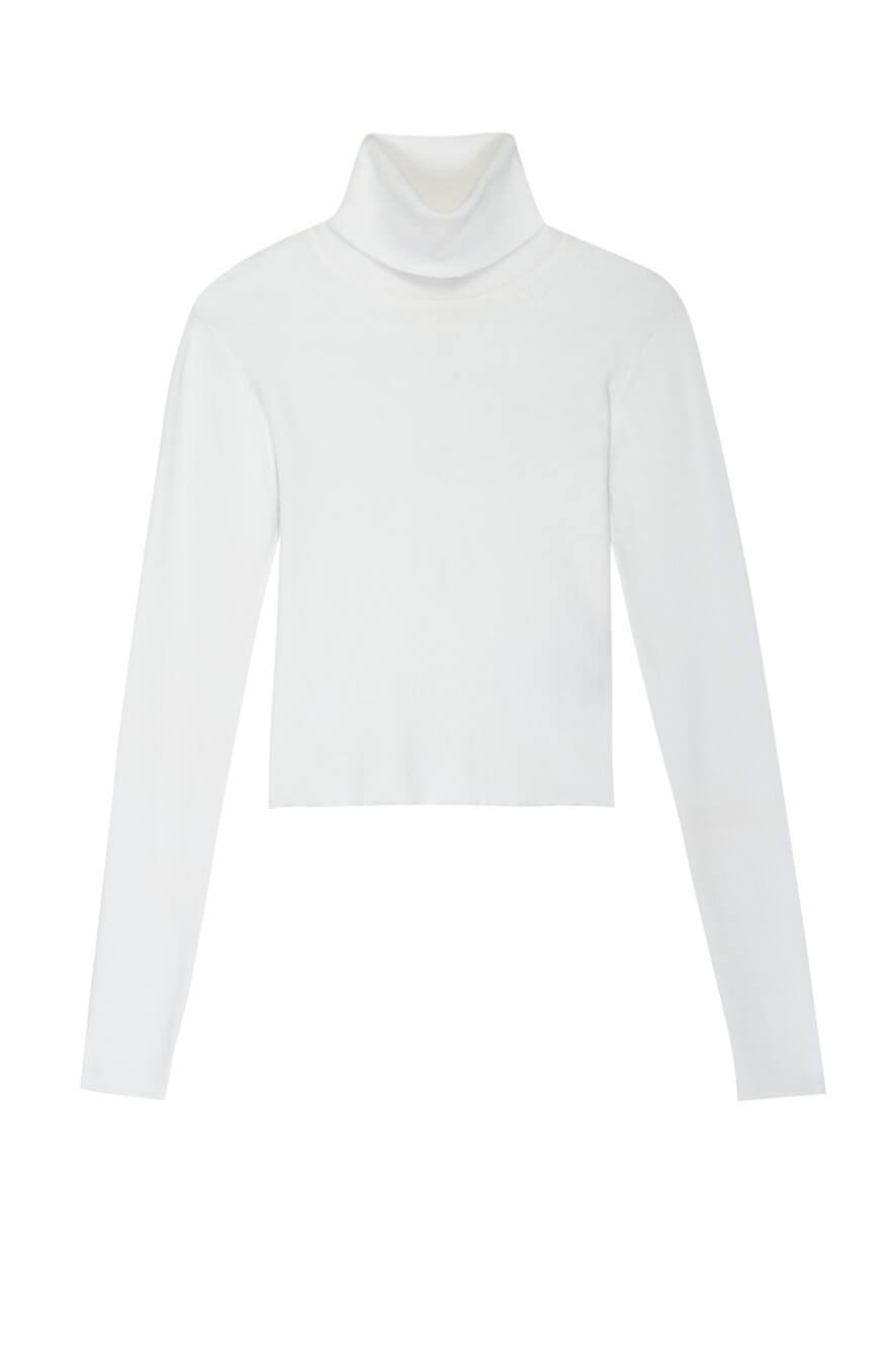 Eberly Turtleneck Top
