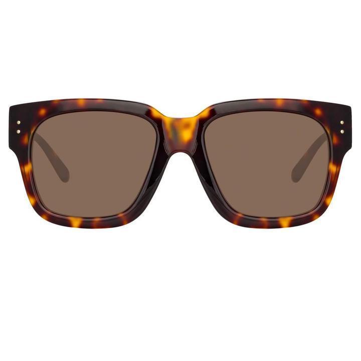 Seymour D- Frame Sunglasses Item # LFL1050C2SUN