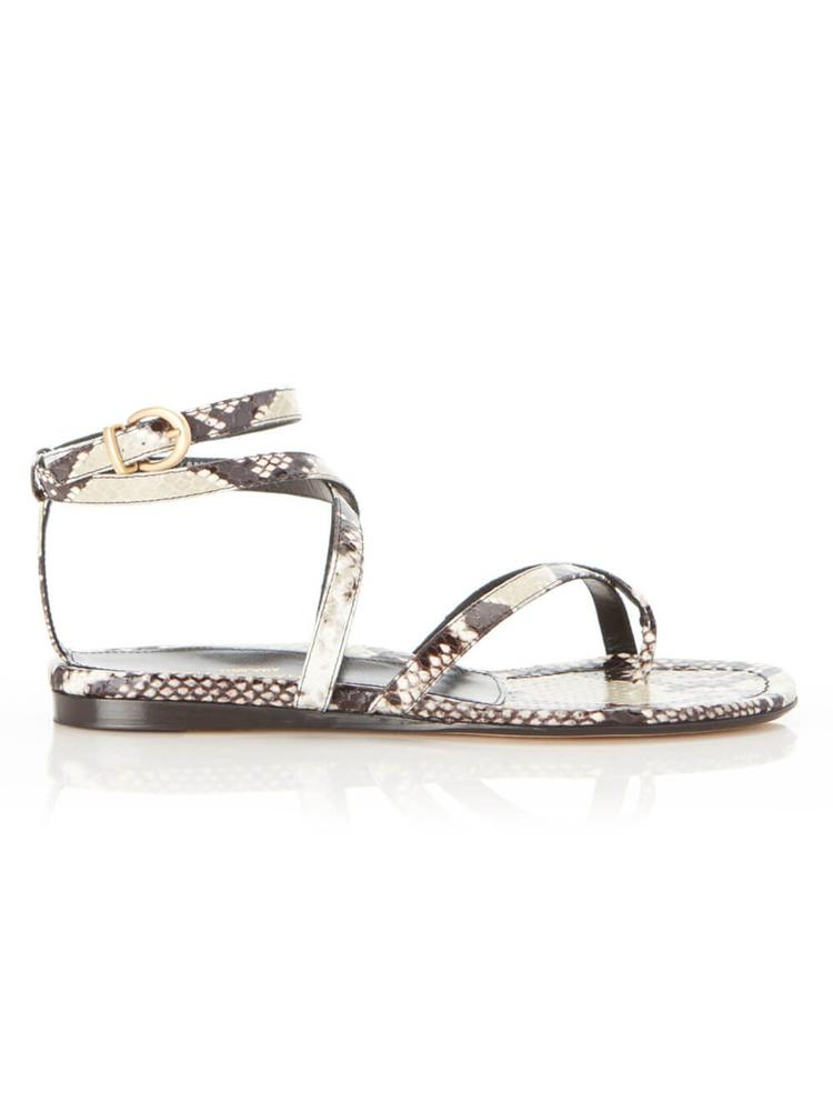 Harvey Gladiator Sandal