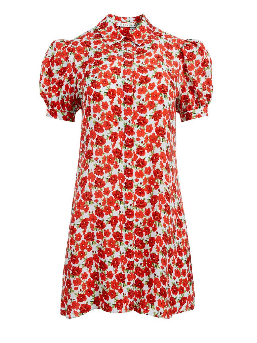 Jem Shirt Dress