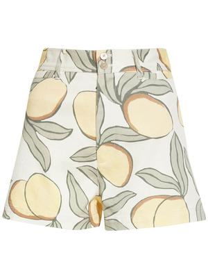 Lemon Tree Printed Shorts
